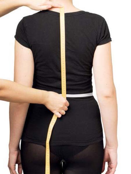 длина спины